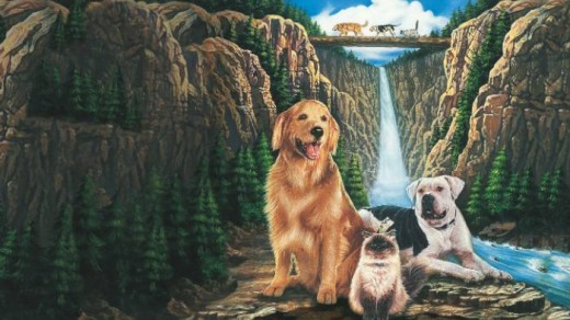 KIDS CLUB CLASSICS: Homeward Bound: The Incredible Journey Image