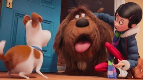 The Secret Life of Pets Image